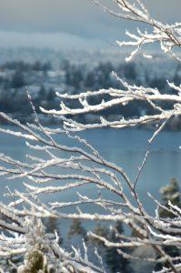 2008_feb_eagle_house_snow-26